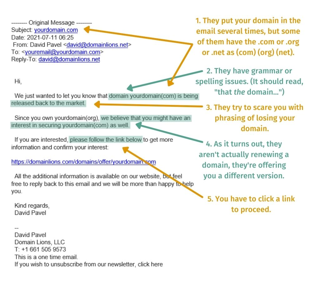 screenshot of domain lions email - a common domain renewal scam